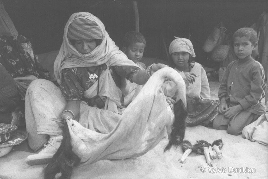 Sahara Algérien 1990-1991